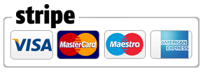 Stripe Payment Icon
